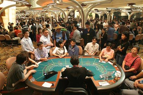 macau gamblers3