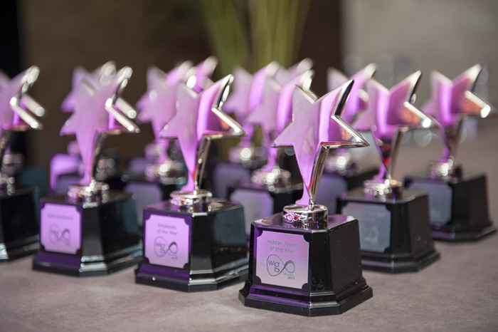 WIG6 Awards