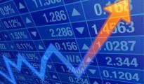 stocks shares